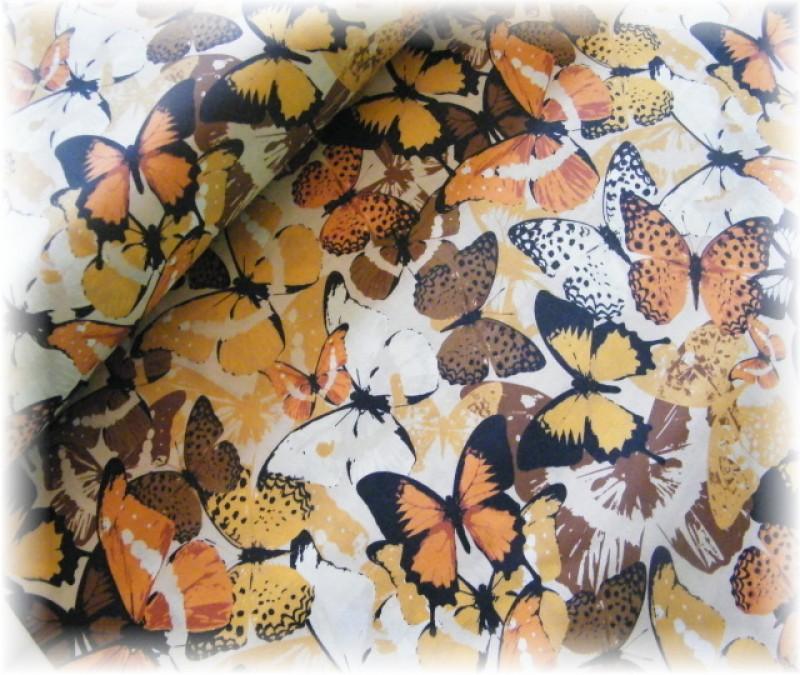 hnědí motýli