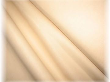 tělíčková-světlá