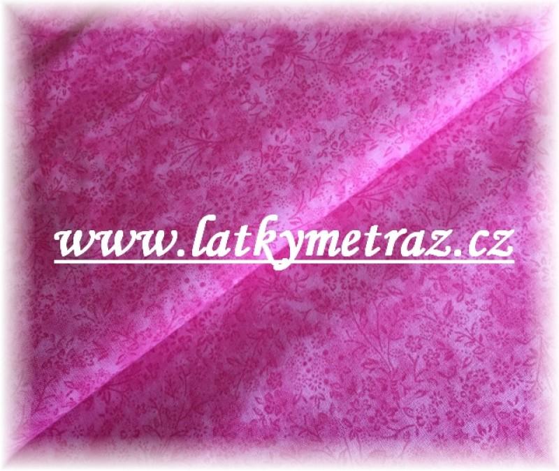 Bylinky růžové
