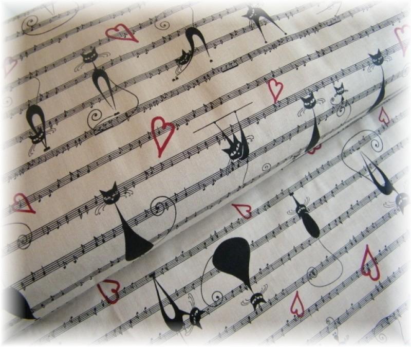 kočky s notama