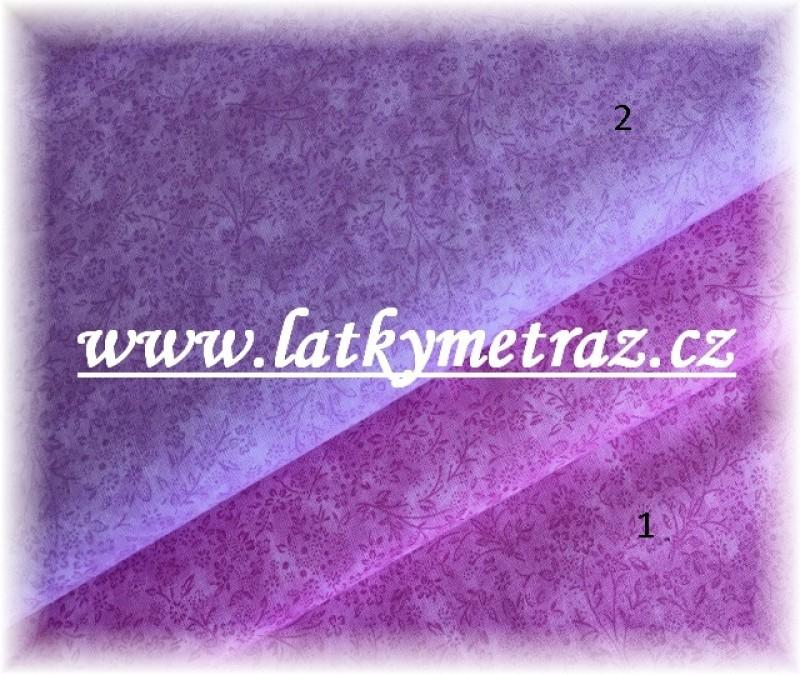 Bylinky fialové č.1