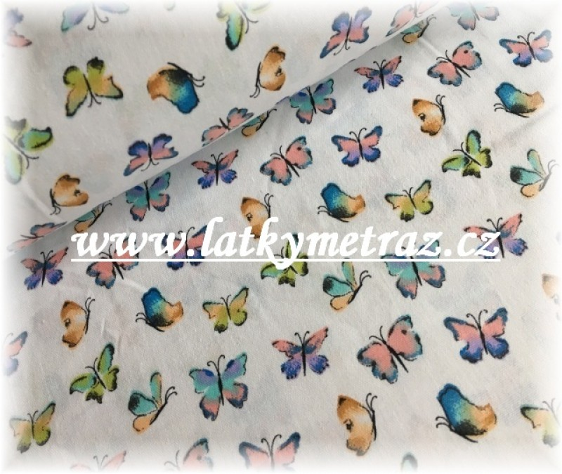 drobní motýlci