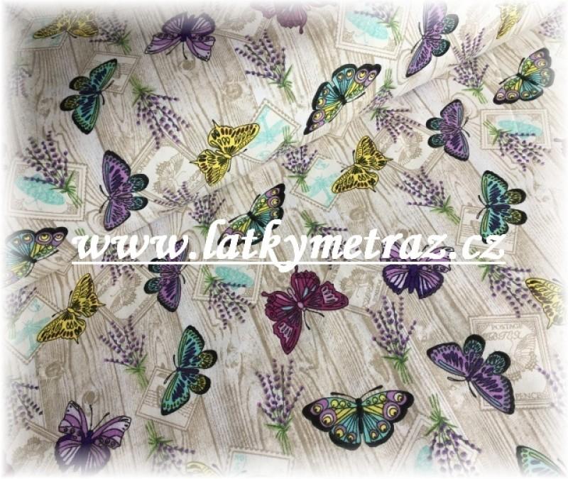 motýli na prknech