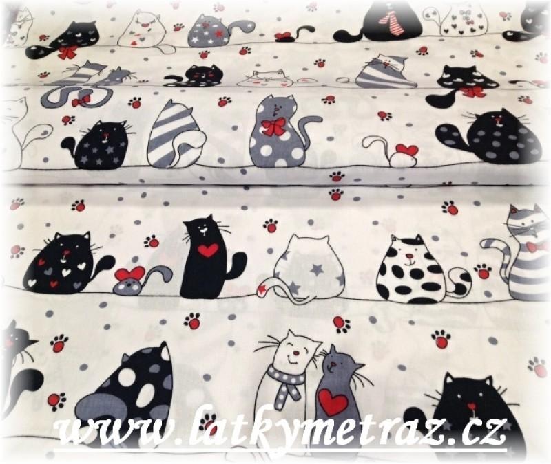 kočky na bílém-10 metrů