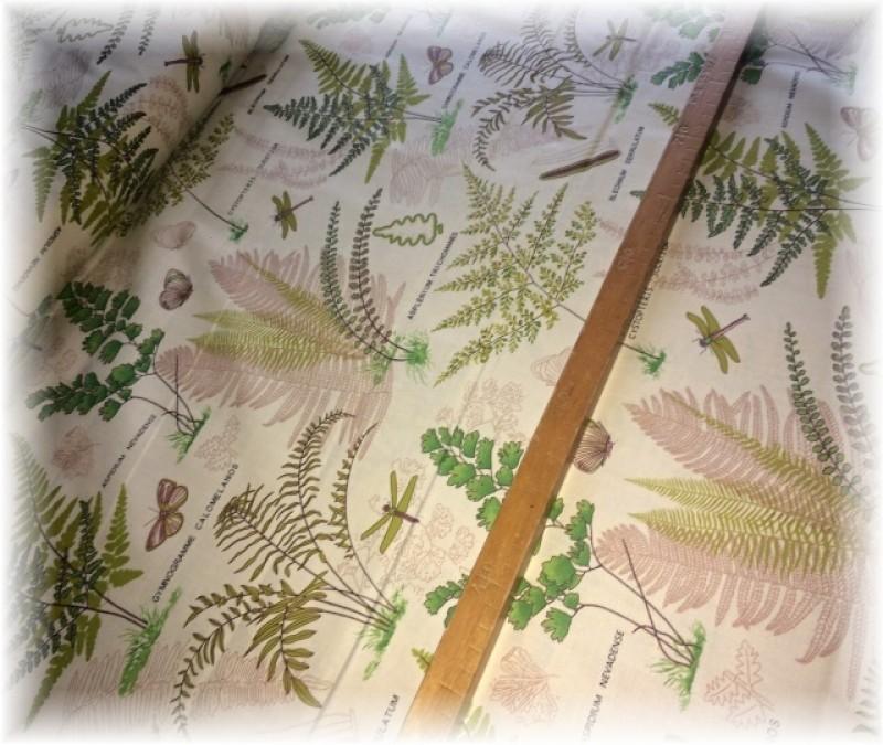 rostlinky č.1-zbytek 25 cm