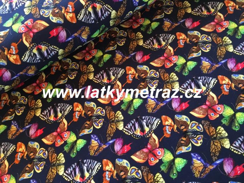 teplákovina s motýly-zbytek 75 cm